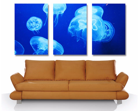 Jelly Fish Triptych 3 Piece Wall Art 3 Piece Wall Art Dunn Furniture - Online Office Furniture for Brisbane Sydney Melbourne Canberra Adelaide