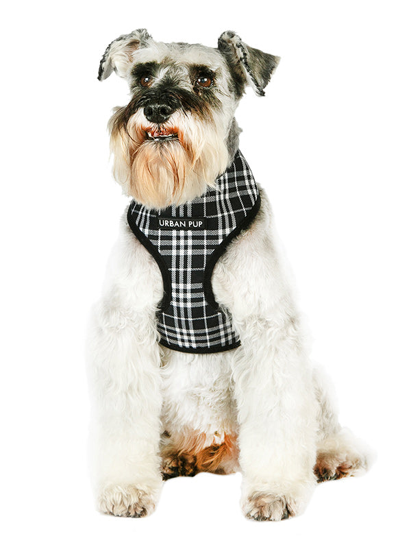 Black & White Tartan Dog Harness