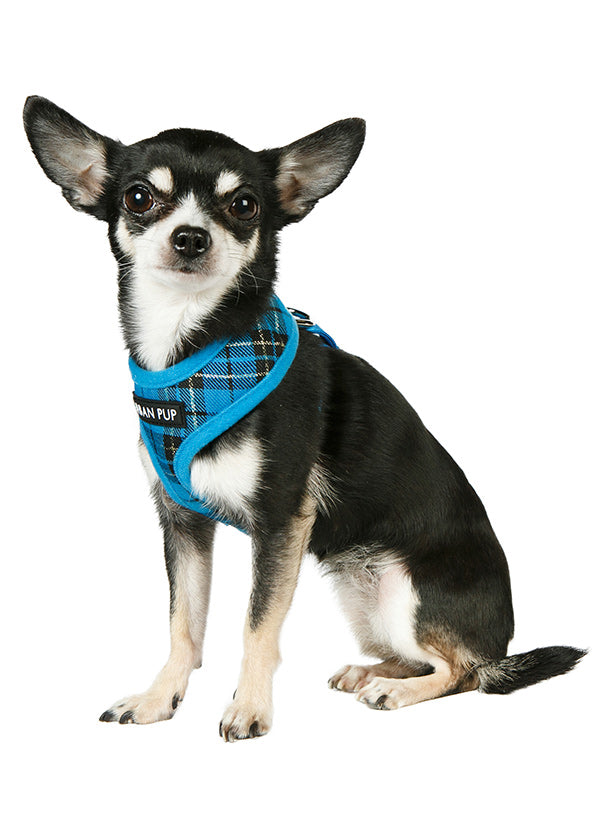 Blue Tartan Dog Harness