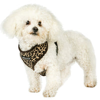 Leopard Print Dog Harness
