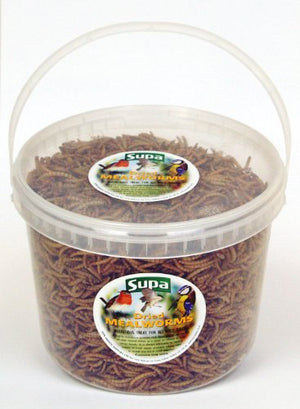 Supa Dried Mealworms - Wild Bird Food/Treat 3Ltr