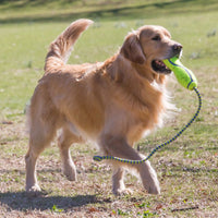 KONG AirDog Fetch Stick w/Rope