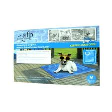 All For Paws Chill Out Always Cool Dog Mat