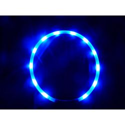 Animate Dog LED Flashing Loop Collar Band Blue