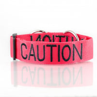 Caution Dog Collar Red