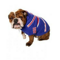 Dog Hoodie Union Jack (Limited Edition)