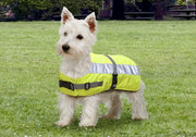 Hi Vis Dog Jacket Coat Petlife