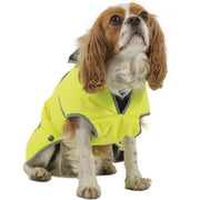Ancol Muddy Paws Stormguard Dog Coat Hi-Vis