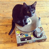 Cat Scratching Pad DJ Deck