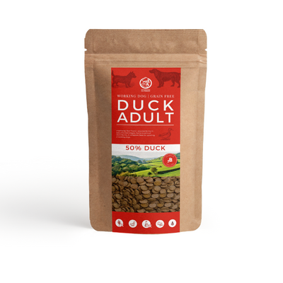 Clydach Farm English Duck Grain Free Adult Dog Food