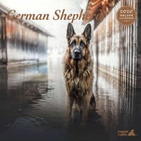 Deluxe German Shepherd Dog Calendar