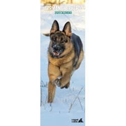 German Shepherd Slim Dog Calendar