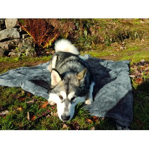 Henry Wag Multimat Travel Throw Dog Rug