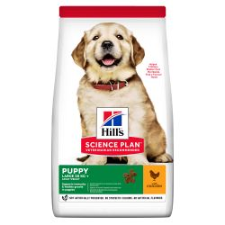 Hills Science Plan Puppy Large Breed Chicken 12KG Dry Dog Food