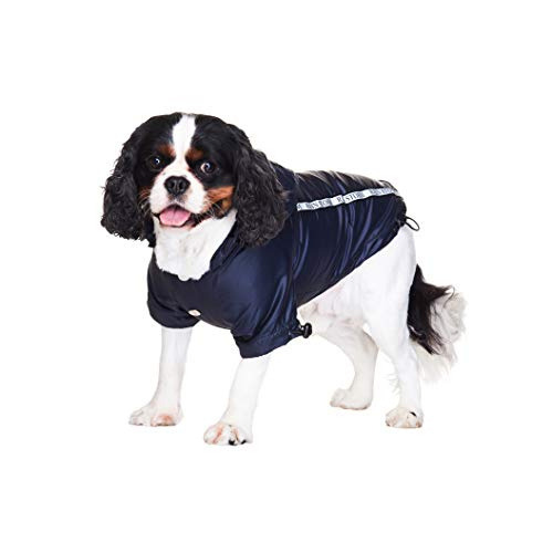 Ink Blue Dog Rainstorm Raincoat
