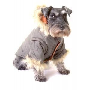 Dog Coat Nosy Parker in Khaki