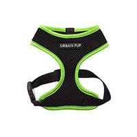 Active Mesh Neon Green Dog Harness
