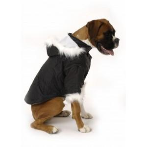 Dog Coat Nosy Parker in Black