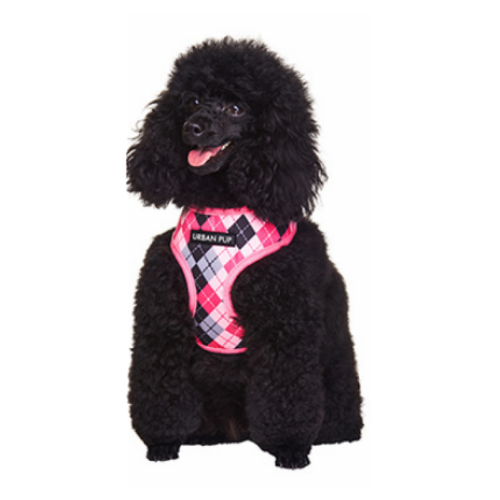Pink & Black Argyle Dog Harness