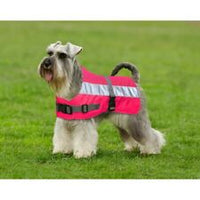 PetLife Flecta VizLite 3 in 1 Pink Dog Jacket