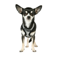 Steel Grey Soft Dog Harness