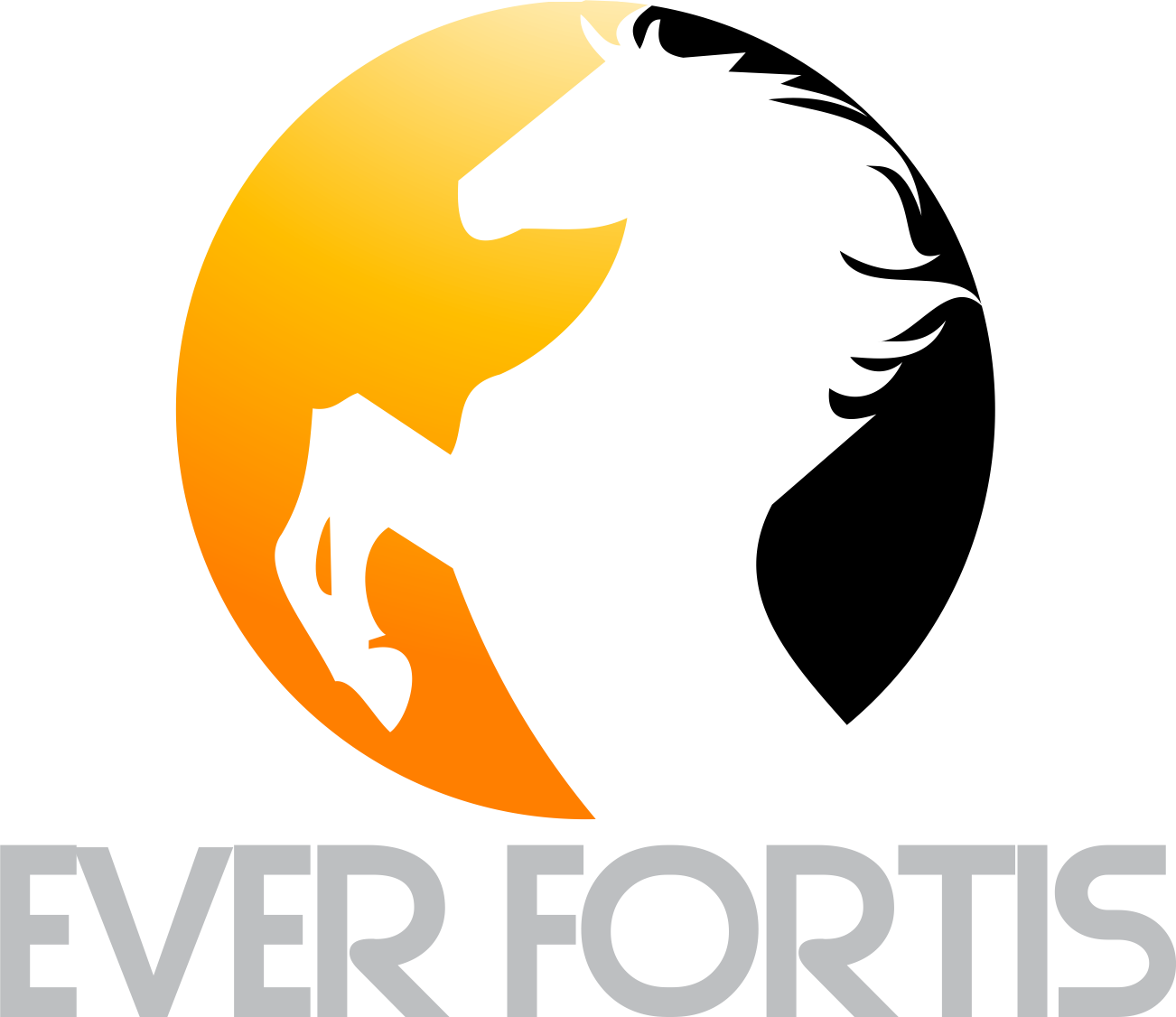 www.everfortis.com