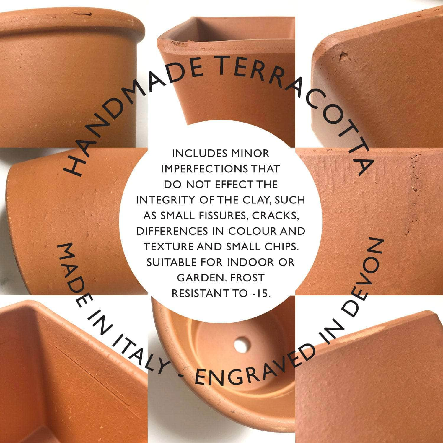 Engraved Bee Plant Pot