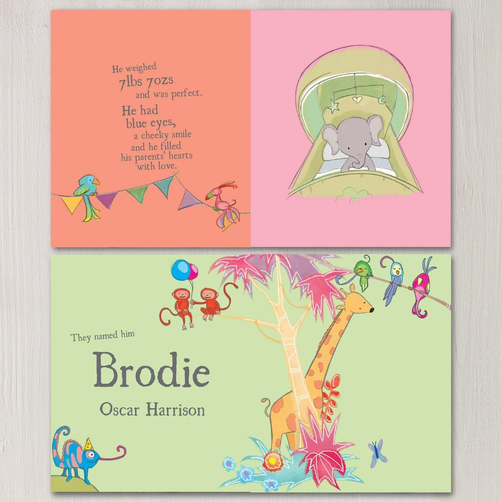 letterfest book Personalised Baby Story Book