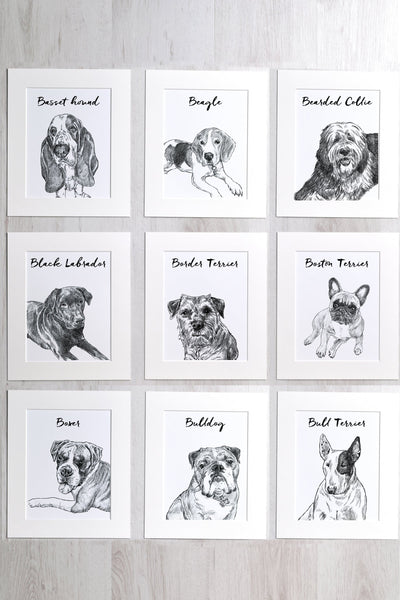 letterfest illustration Favourite Dog Print
