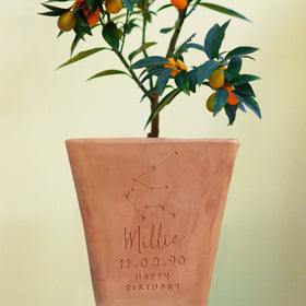 letterfest terracotta Personalised Birthday Horoscope Plant Pot