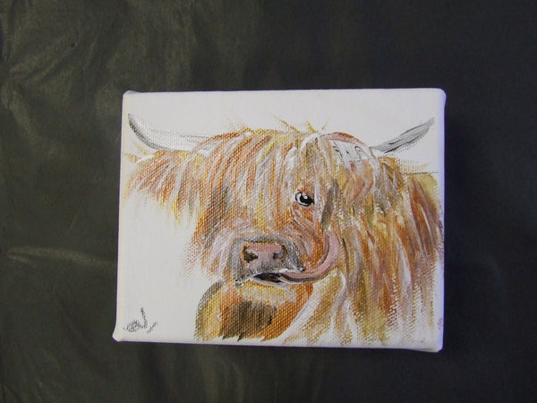 Highland Cattle mini canvas