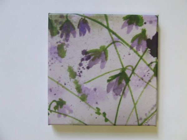 Bluebell haze canvas