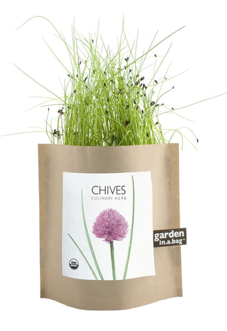 Garden in a Bag - Chives