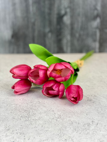 Bundle of 6 Fuchsia Tulips