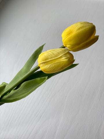 Tulip Stem - Yellow