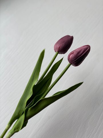 Tulip Stem - Purple