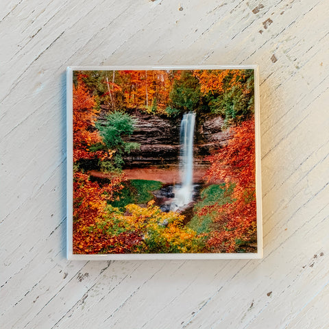 Waterfall in Autumn Coaster