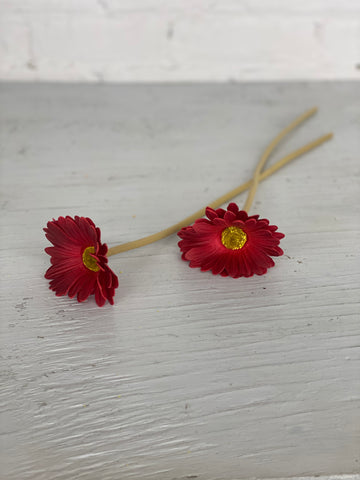 Red Gerber Daisy Stem