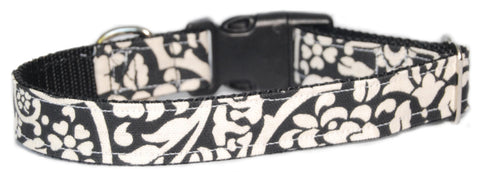 Kalahari Splendor Dog Collar