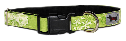 Spring Tea Dog Collar