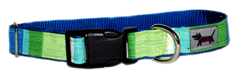 Surf and Turf Dog Collar