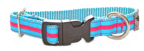 Candy Stripe Dog Collar