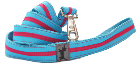 Candy Stripe Leash