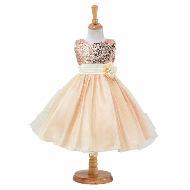 3-14yrs teenagers Girls Dress Wedding Party Princess Christmas Dresse for girl Party Costume Kids Cotton Party girls Clothing-hipnfly-as picture 4-3T-hipnfly