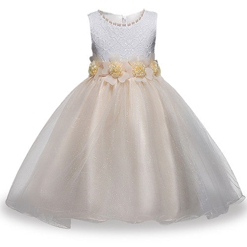 Summer Flower Girl Dress Ball gowns Kids Dresses For Girls Party Princess Girl Clothes For 3 4 5 6 7 8 Year Birthday Dress-hipnfly-as picture 5-3T-hipnfly