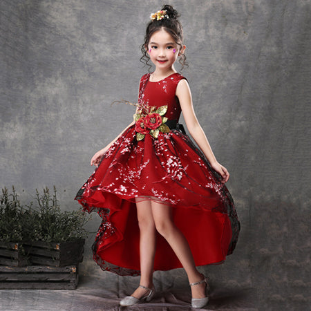 New Brand Flower Girls Dress Kids Princess Party Wedding Gowns for Children Graduation Ceremony Baby Kids Long Tail Formal Wear-hipnfly-Color 7-4T-hipnfly