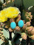 Oval Campitos Turquoise stud earrings