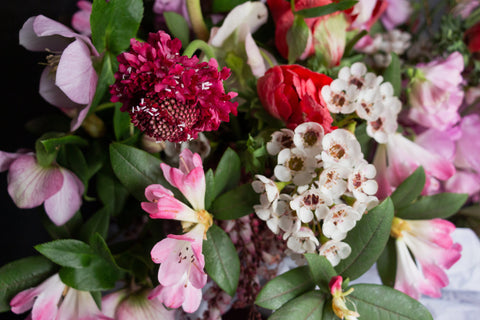 Beautiful pink and red flowers by Melbourne florist Flowers Vasette, Fitzroy Melbourne