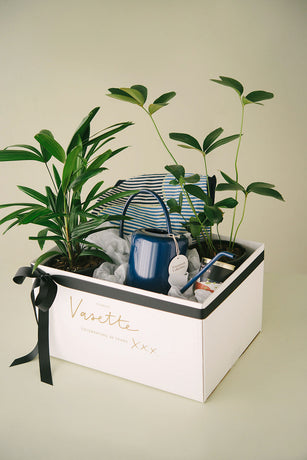 GREEN THUMB HAMPER