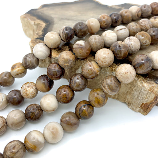 Petrified Wood Strand - 10mm Smooth Round (large hole)